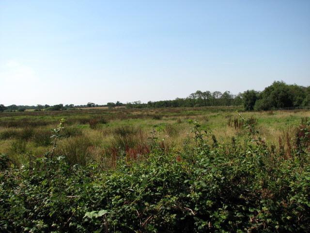 View across South Fen