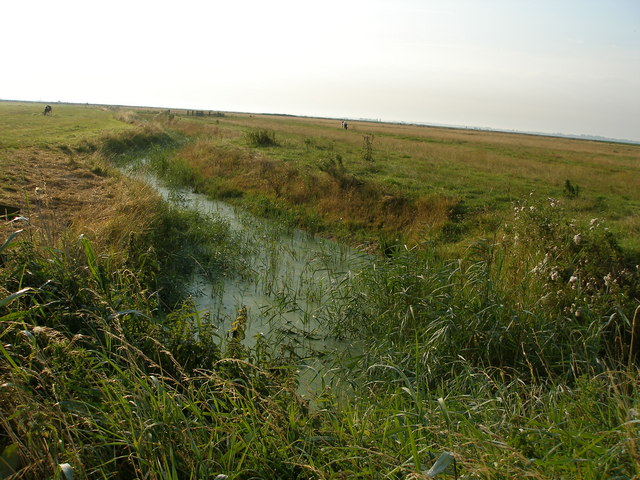 Drainage ditch in The Broads