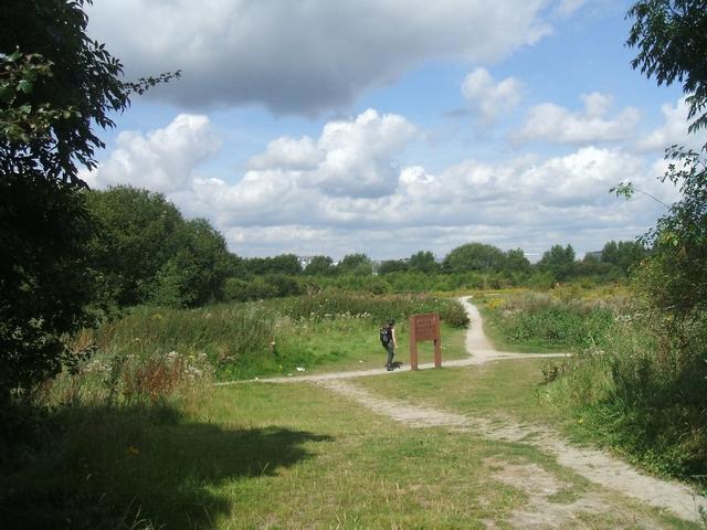 Public access land