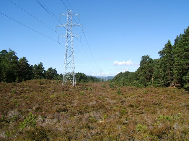 Power lines cut through Abernethy Forest