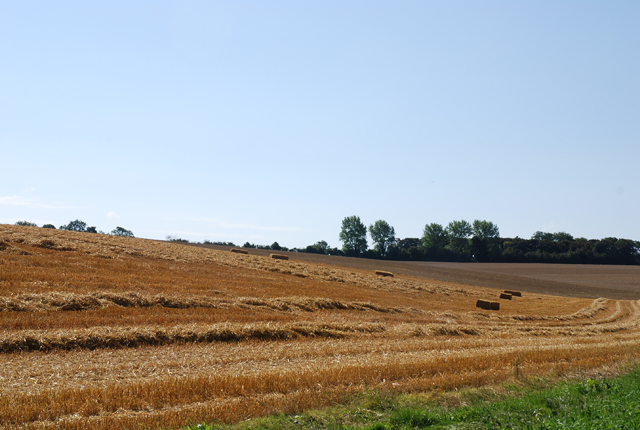 After the harvest on Lower Pertwood Farm