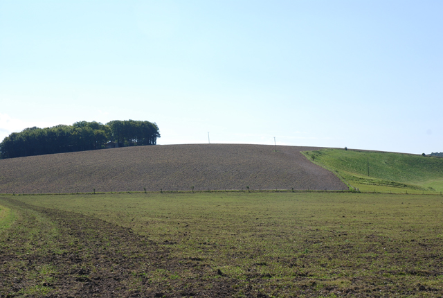 Fields of Field Barn Farm