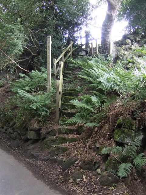 Footpath to Mosslee Grange
