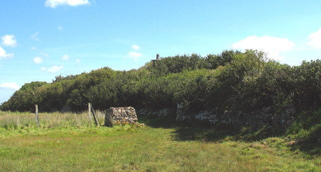 The chimney of the ruined Gatehouse Rhuddgaer