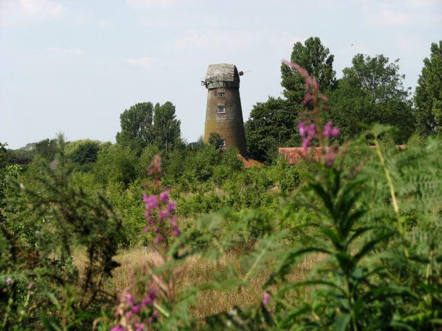 Windmill on Windmill Road