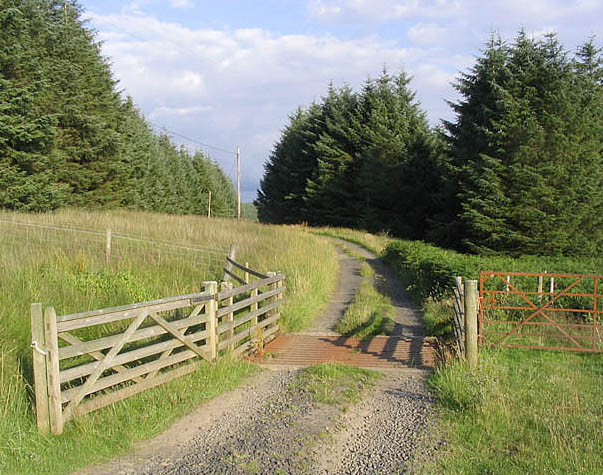 The road from Sundhope Farm at Whitrope Edge