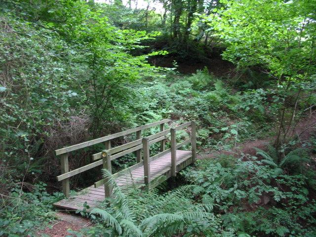 Footbridge over Cumbeth Brook.
