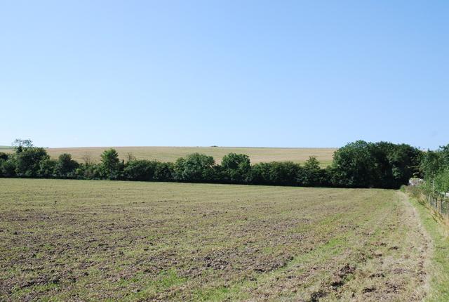 Field Barn Farm field