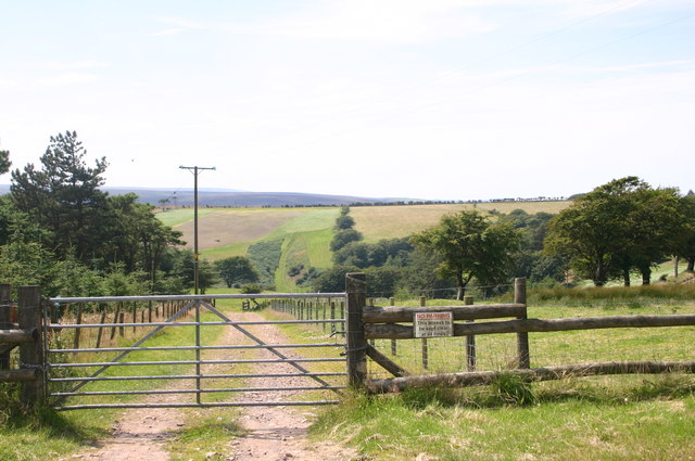 Fields down to Lillycombe house