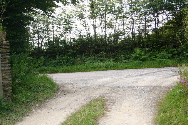 Farm road out to Mill Lane near Hillhead Cross
