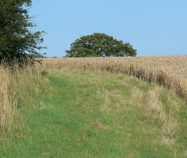 Farmland off Somerby Road