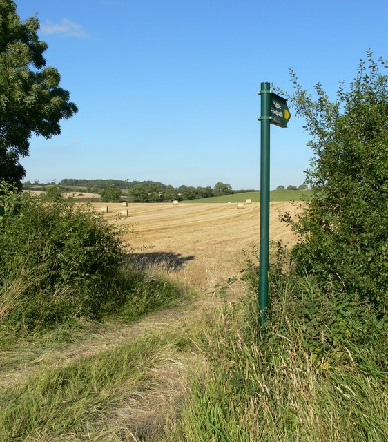 Public Footpath to Owston Woods