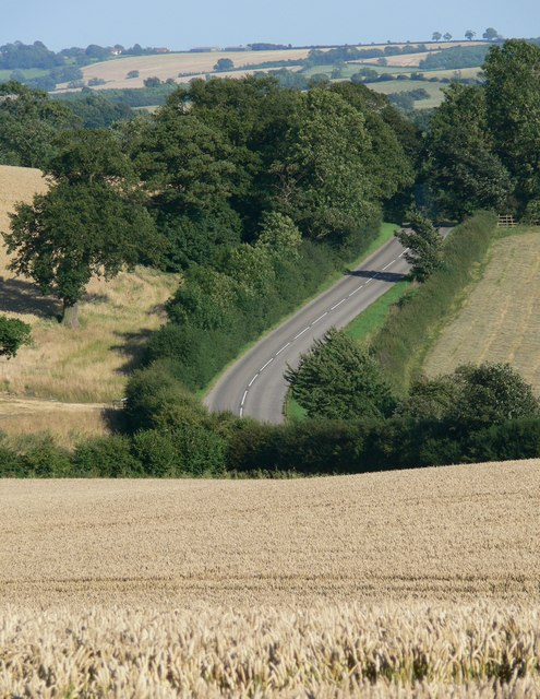 Farmland and Lane