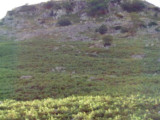 Latterhaw Crag