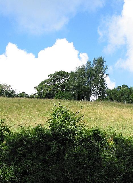 Field near Aston Crews