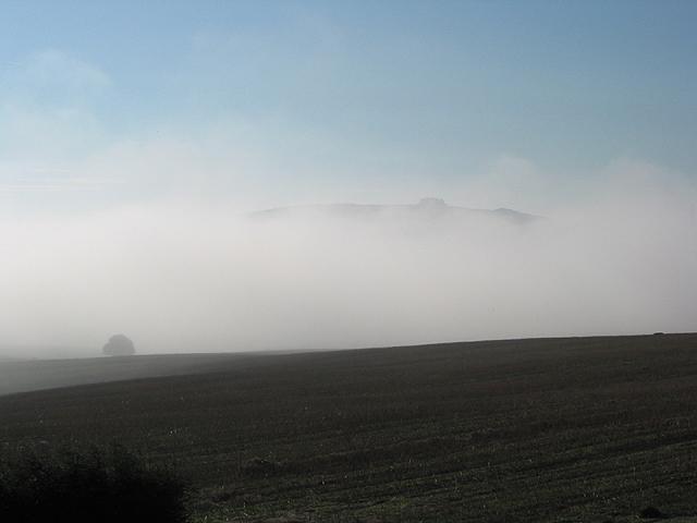 Morning mist over stream