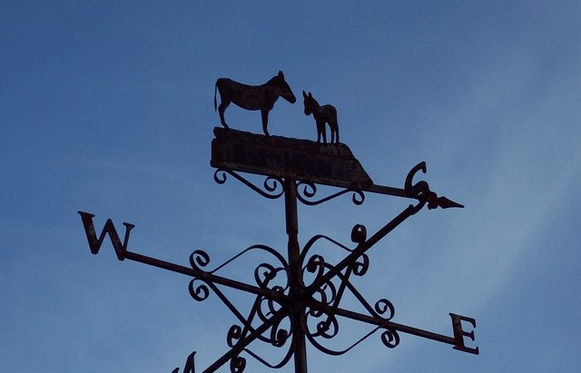 A Donkey Lovers Weathervane