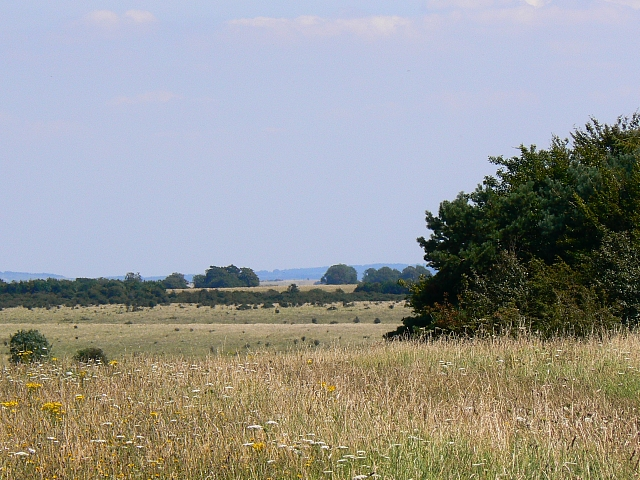 The Imber range, Salisbury Plain