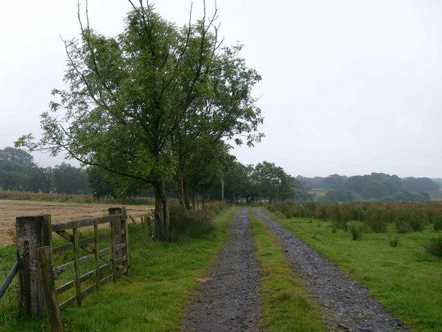 Public bridleway to Catlowdy