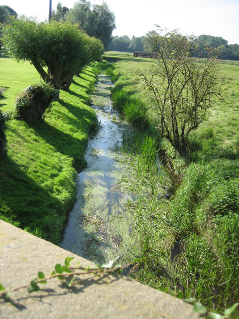 Tributary of R. Wensum on the edge of Gressenhall