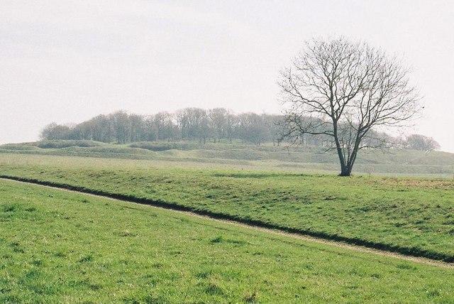 Badbury Rings: a wintry view