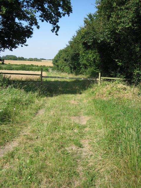 Track beside Rawhall Wood