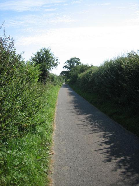 Stony Lane, Bittering