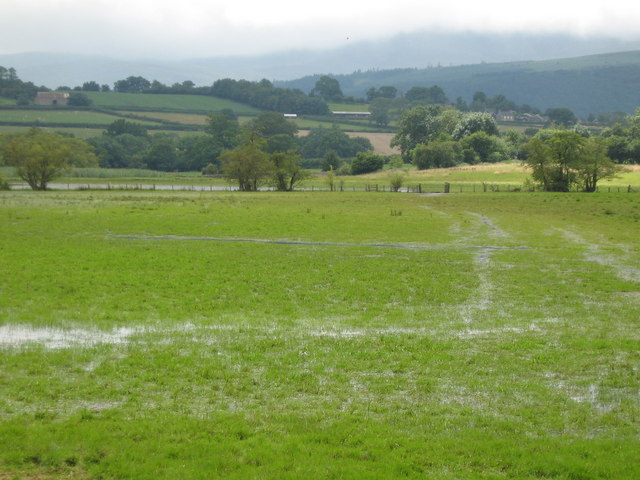 Waterlogged field