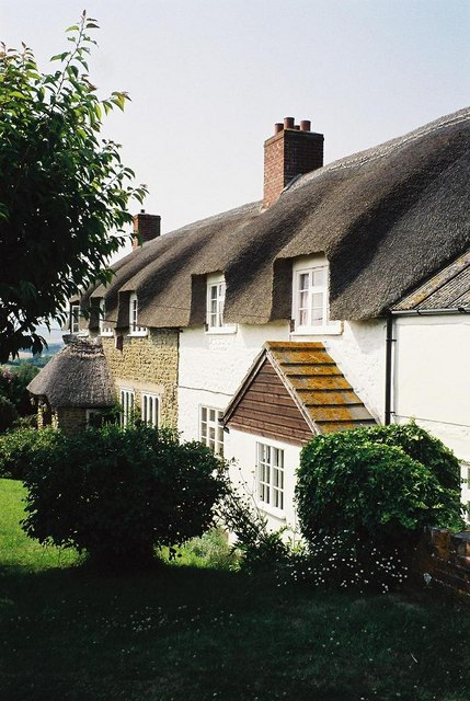 Shilvinghampton: thatched cottages