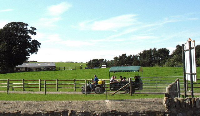 Tractor and trailer  ride at Foel Farm Park