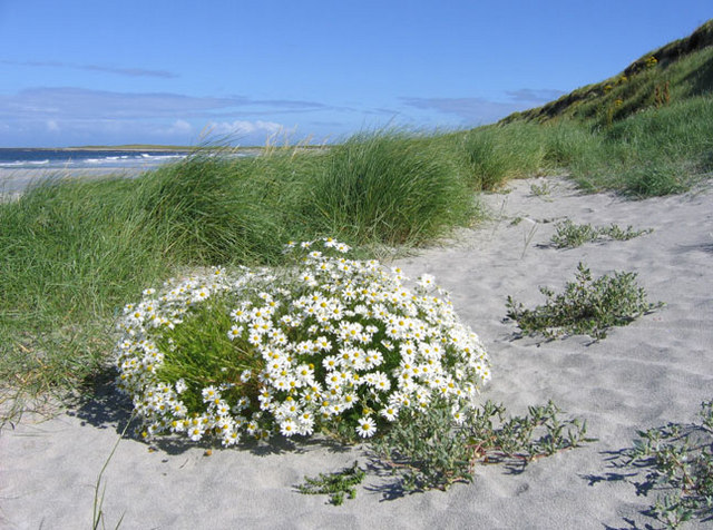 Sand dunes near Milton, South Uist