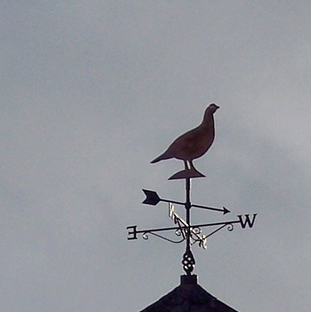 Grouse Weathervane