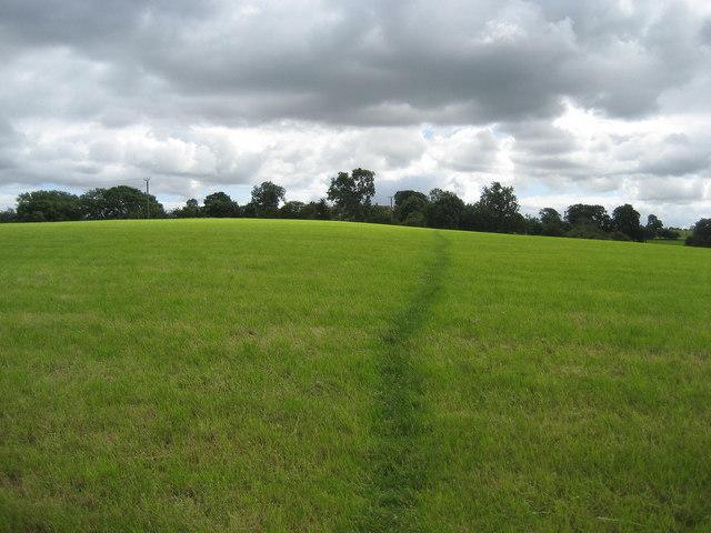 Pendle Way near Earby