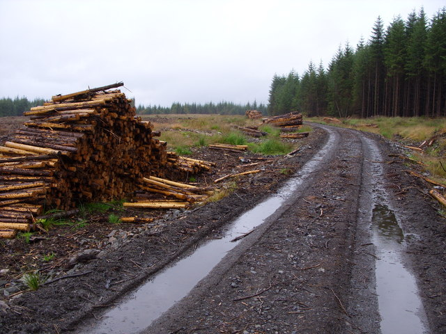 Timber Stack on the Glassoch Fell