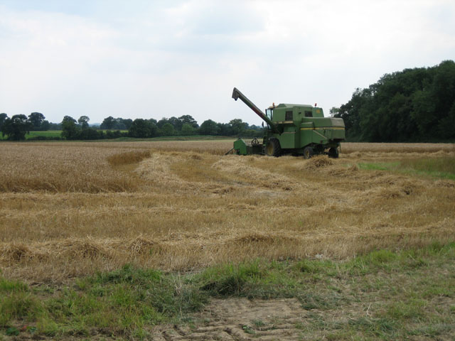 Combine harvester waiting to unload near Gateley