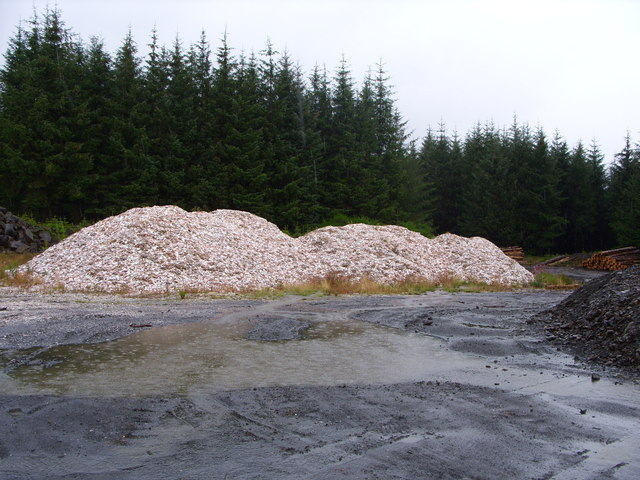 Shells used for Forest Road Surface