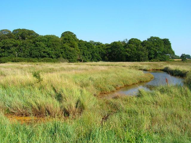 Chalkdock Marsh