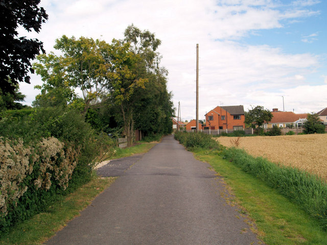 Footpath and lane in front of houses.