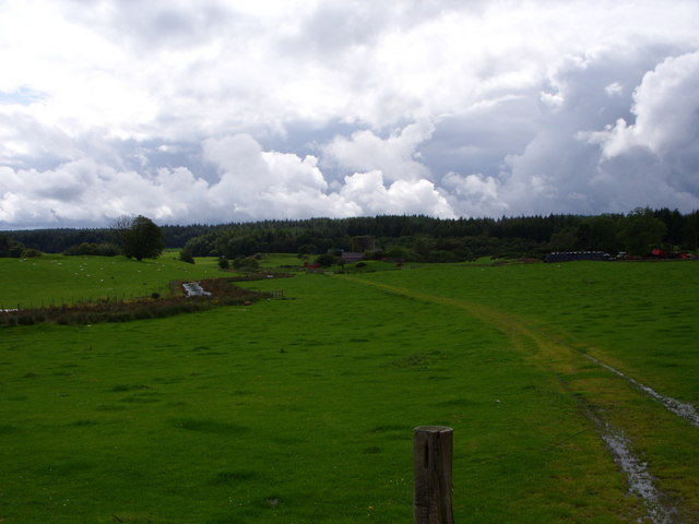 Track Leading To Castle Stewart
