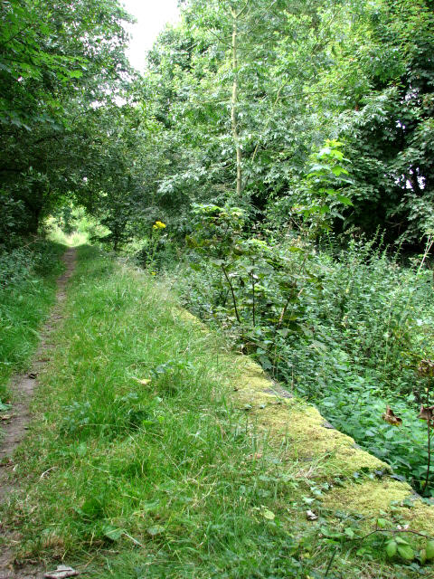 Section of Weavers' Way