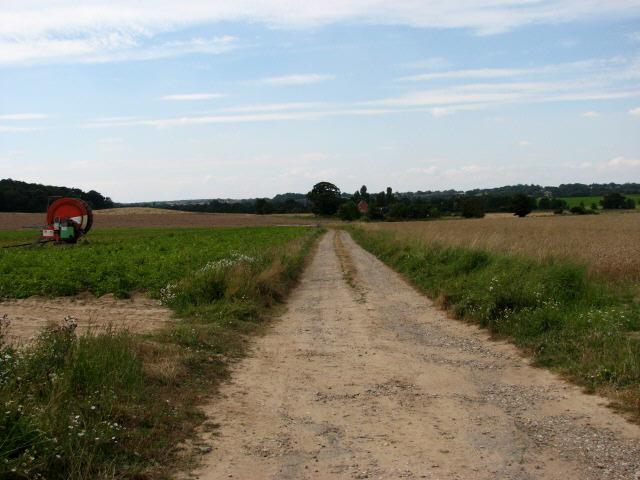 Track to River Farm