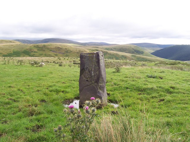 `Standing` stone on Deel`s Hill