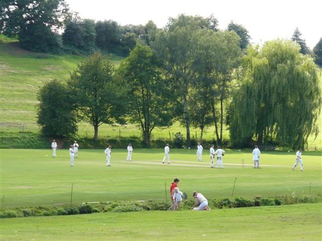 Abinger Hammer Cricket Pitch