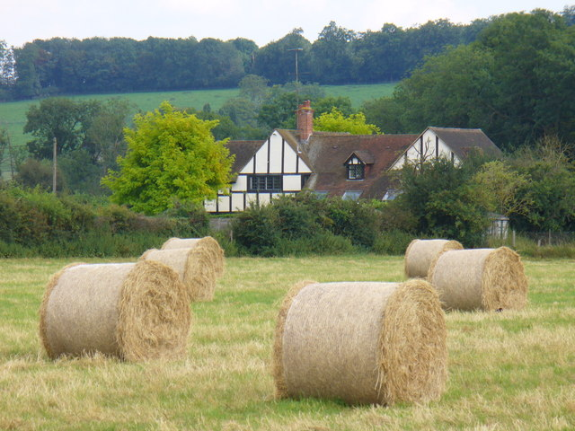 Hay Bales near Shepherds Lane