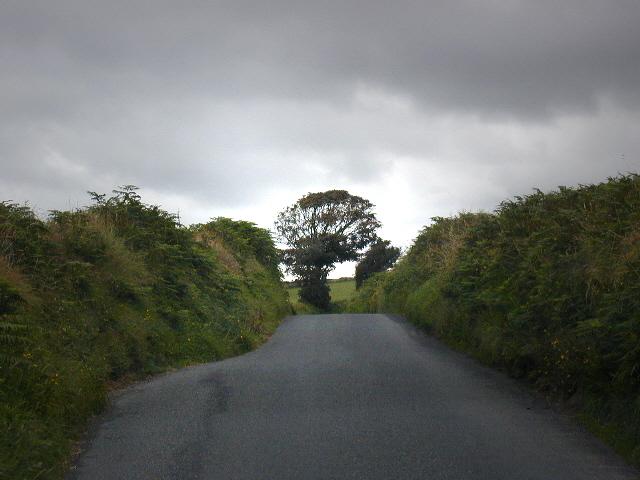 Lane east of Y Ferwig