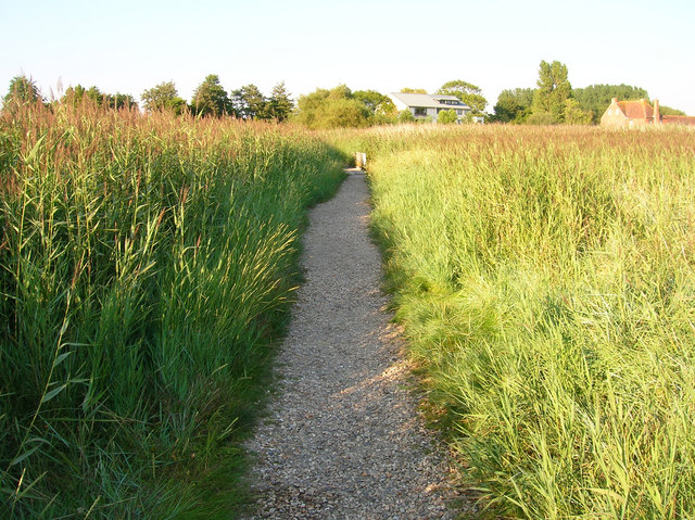 Footpath through the Reedbeds