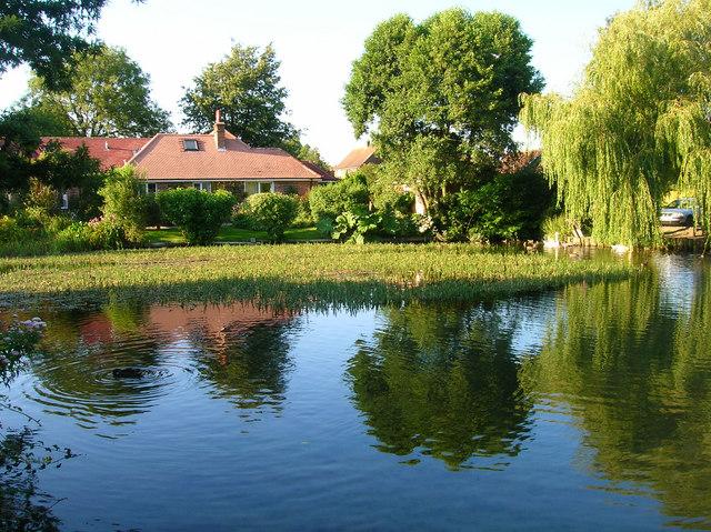 Mill Pond