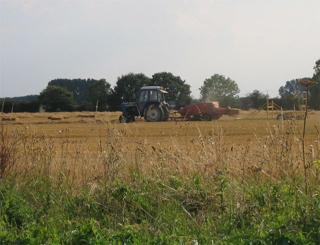Baling the old way on Great Heath by Ling Plantation