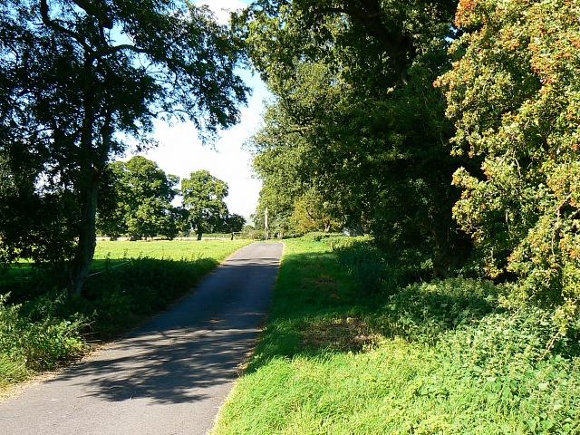 Bridleway, Hatfield Farm, Etchilhampton