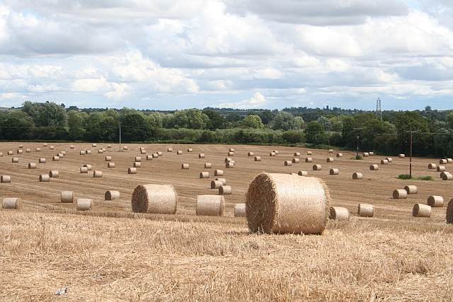 Straw Bales, Callow End